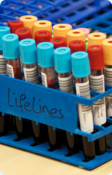 lifelines-bloodtray